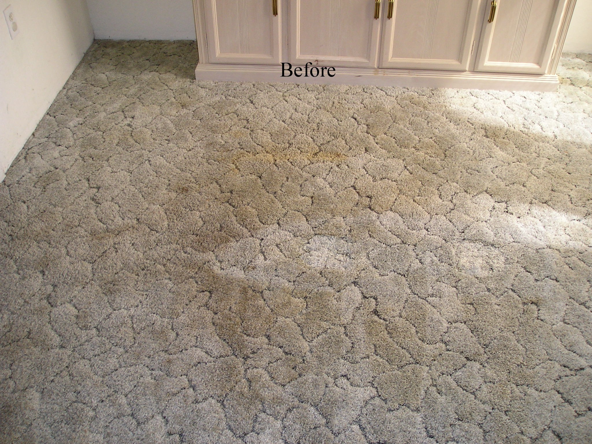 Heaven S Best Carpet Cleaning Kearney Ne Carpet Vidalondon